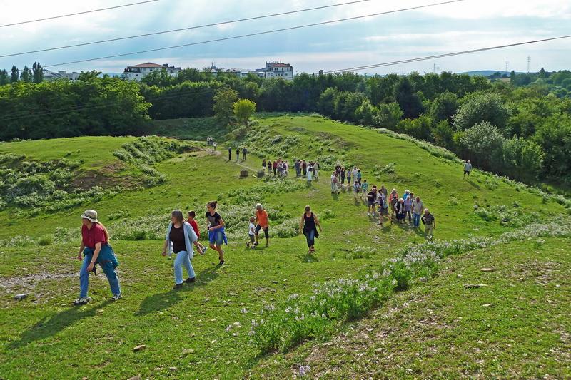 2011-07-finkbg-hock-006