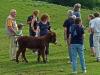 2011-07-finkbg-hock-009